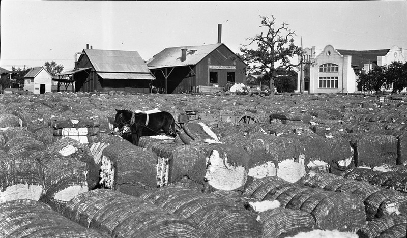 Waco Cotton Yard (c. 1915)