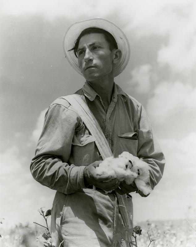 Mexican American Fieldworker (c. 1920)